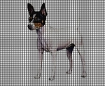 Fox Terrier 5 Crochet Pattern
