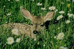 Deer Crochet Pattern