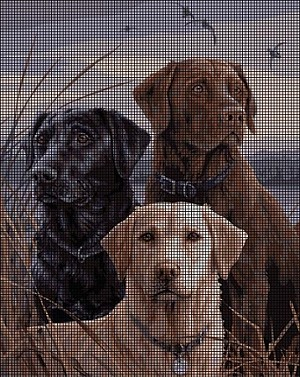 Proud Labs Crochet Pattern