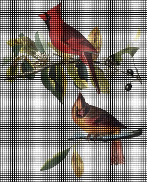 Male Amp Female Cardinals Crochet Pattern