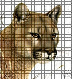 Cougar Crochet Pattern