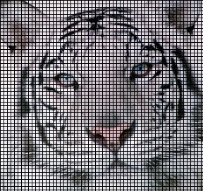 Crochet white and bengal tiger DIY tutorial Part 1 of 3 - YouTube | 272x288