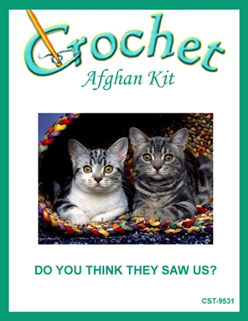 Do You Think They Saw Us? Crochet Afghan Kit