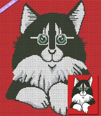 Cat with Glasses Crochet Pattern