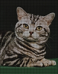 Kitty Cat Portrait Crochet Pattern