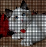 Ragdoll Cat Crochet Pattern