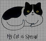 My Cat Is Special Crochet Pattern