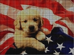 A Puppy Named Patriot Crochet Pattern