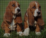 Basset Hound Puppies Crochet Pattern