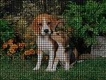 Beagle & Pup Crochet Pattern