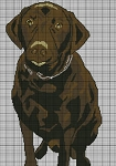 Brown Dog Crochet Pattern