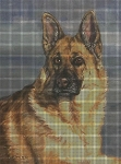 German Shepherd Portrait Crochet Pattern