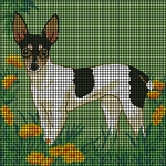 Toy Fox Terrier 2 Crochet Pattern