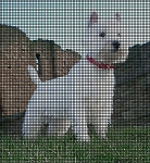 West Highland White Terrier Crochet Pattern