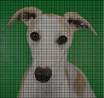 Whippet Dog Crochet Pattern
