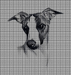Whippet Dog Portrait Crochet Pattern
