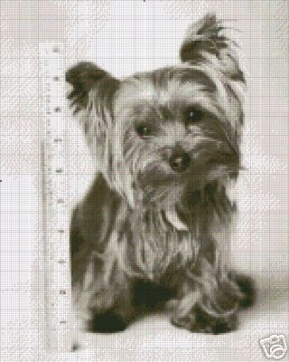 Yorkshire Terrier Crochet Pattern