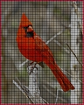 Pretty Cardinal Crochet Pattern