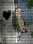 Woodpecker Crochet Pattern
