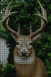 Beautiful Buck Crochet Pattern