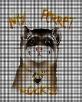 My Ferret Rocks Crochet Pattern