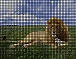 Lion And Lamb Crochet Pattern