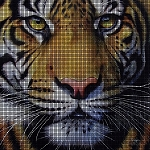 Golden Tiger Face Crochet Pattern