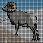 Big Horn Sheep Crochet Pattern