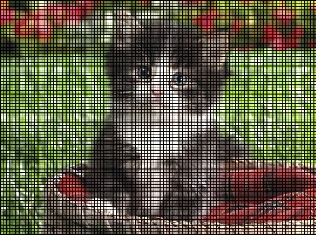 Baby Kitten Crochet Pattern