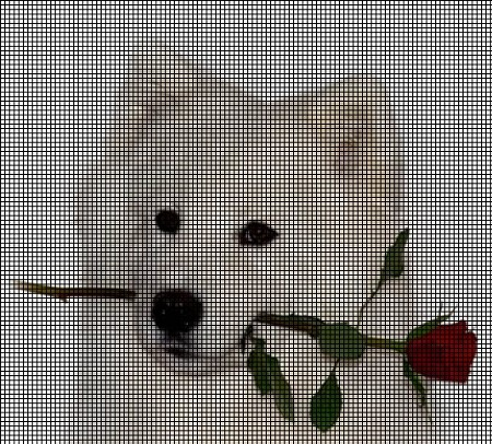 Huskie Rose Crochet Pattern