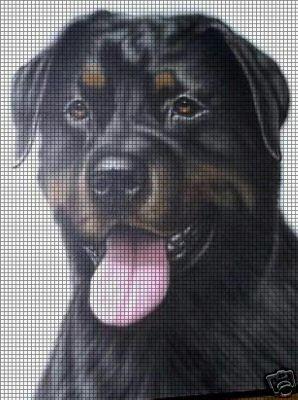 Rottweiler (mit Bildern) | Hund häkeln, Tiere häkeln anleitung ... | 400x298