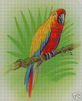Colorful Parrot Crochet Pattern
