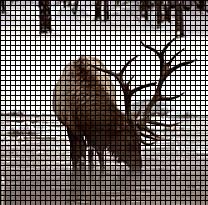 Elk At The Creek Crochet Pattern