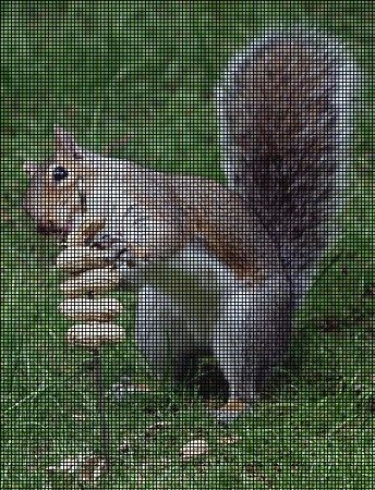 Squirrel Snacks Crochet Pattern